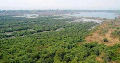 लतरातू की नहरों से इतने हेक्टेयर भूमि की होती है सिंचाई, पढ़िए पूरी खबर