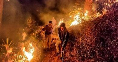 उत्तराखंड के लिए बीते 12 घंटे राहत भरी! पूरे राज्य में जंगल में आग के केवल 7 मामले दर्ज