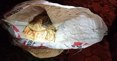 कोलकाता में भाजपा कार्यालय के पास मिले 51 क्रूड बम
