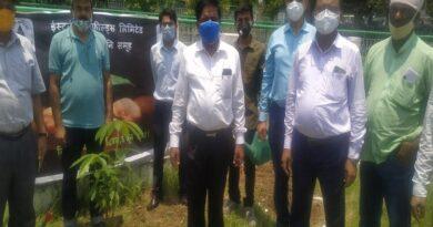 जिले में पर्यावरण दिवस पर किया पौधरोपण