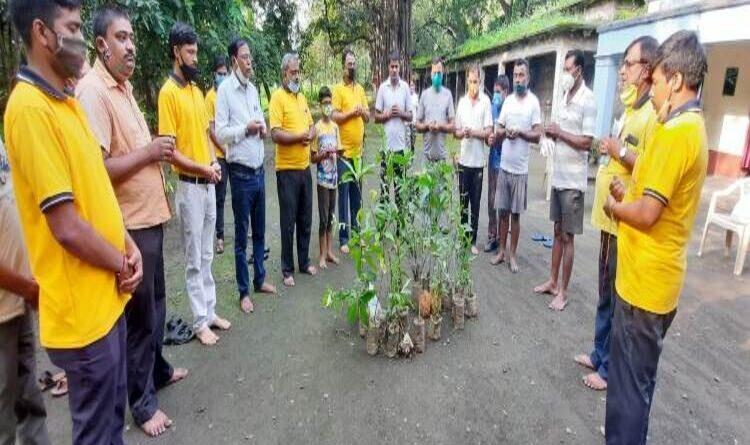गायत्री परिवार टाटानगर का पौधरोपण का कार्यक्रम सम्पन्न हुआ