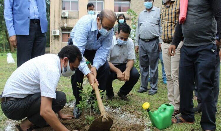 पेड़ हमेशा डस्ट या प्रदूषण तत्व खत्म करता रहता है : अरुण सिंह