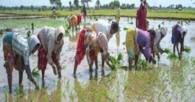 नई तकनीक व योजनाओं का लाभ उठाएं किसान: कृषि निदेशक